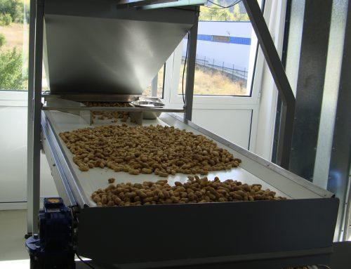 Multiengineering hat in der neu eröffneten Fabrik von Balkan Foods eine Linie zur Wärmebehandlung von Schüttgütern (Ofen zum Rösten von Nüssen) in Betrieb gesetzt.
